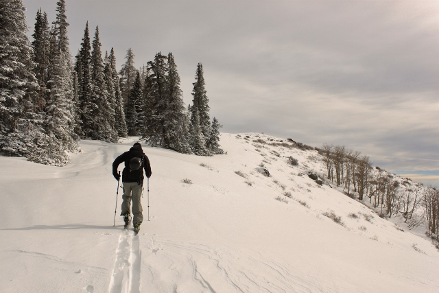 Adam Wolf Creek Peak