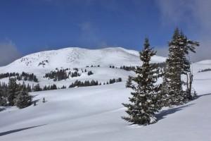 Shelly Baldy Peak