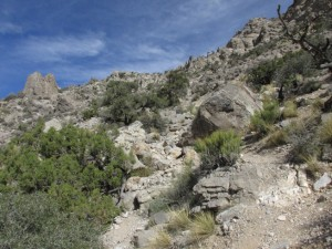 Once you reach the draw that runs lookers left along the peak, the trail gets significantly more challenging.