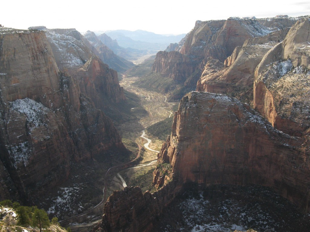 """""""Look at the ants down on Angel's Landing!""""  Observation Point in Zion N.P. takes you much higher than this landmark in the foreground."""