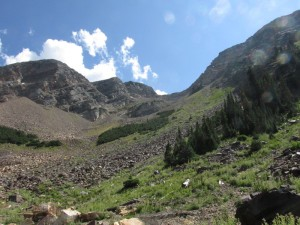 Over 1,000' of steep talus to the saddle makes Broads Fork twin one of the more time consuming climbs in the Wasatch,